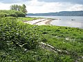 Clyde Foreshore at Westcliff Dumbarton - geograph.org.uk - 431816.jpg