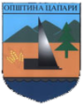 Coat of arms of Capari Municipality.png