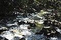Cold, mountain stream (24024168744).jpg