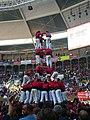 Concurs de Castells 2008 P1220449.JPG