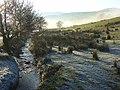 Cooper Beck, Matterdale - geograph.org.uk - 1075101.jpg