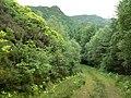 Corarsik Track, Glen Massan - geograph.org.uk - 483436.jpg