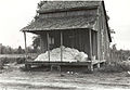 Cotton on porch of sharecropper's home, Maria plantation, Ar... (3109755973).jpg