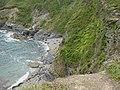 Cove between Black Head Peninsula and Drennick - geograph.org.uk - 51035.jpg