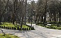 Crossroads at Zugdidi Botanical Garden.jpg