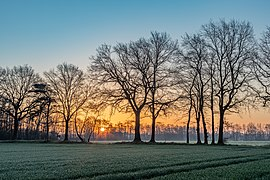 Dülmen, Dernekamp, Sonnenaufgang -- 2021 -- 6973-5.jpg