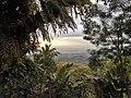 DSCI3101 Blick runter auf Dili.JPG