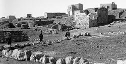 דאהרייה בתחילת המאה ה-20