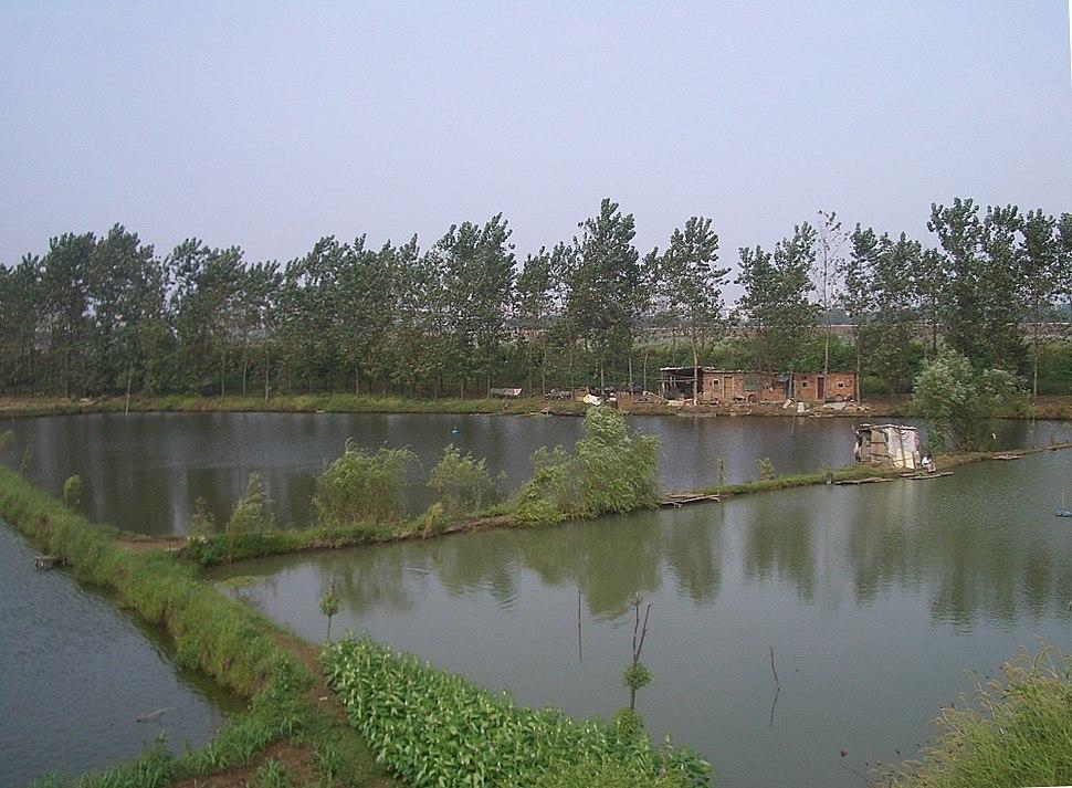 Daye-pond-system-fishermen-0078-rotated