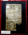 Dead Sea Scroll 175, complete, Testimonia, from Qumran Cave 4, the Jordan Museum in Amman.jpg