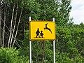 Deer Isle Maine deer crossing and school crossing sign.jpg