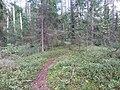 Degučių sen., Lithuania - panoramio (177).jpg