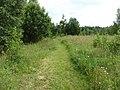 Degučių sen., Lithuania - panoramio (246).jpg