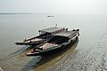 Desi Boats - River Ichamati - Taki - North 24 Parganas 2015-01-13 4328.JPG