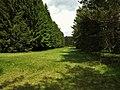 Die Franzosenwiesen Burgwald.jpg