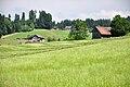 Diemberg (Eschenbach) 2010-06-25 15-10-36.JPG