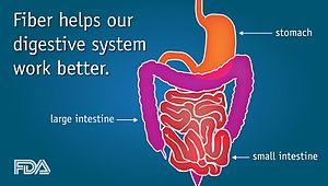 Dietary fiber benefits
