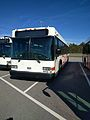 Disney Bus Number 4955-07 (30855619283).jpg