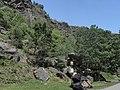 Divoká Šárka - panoramio (43).jpg