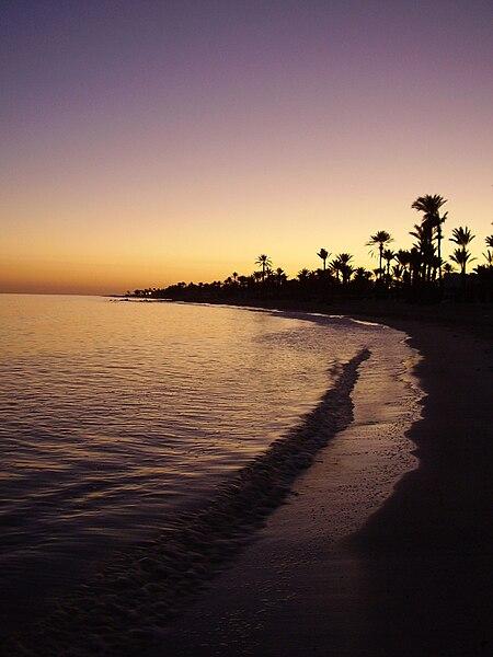 File:Djerba sunset palms.jpg