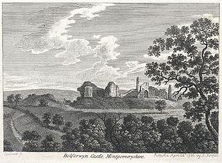 Dolforwyn Castle, Montgomeryshire