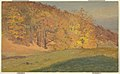 Drawing, Autumn Woods, ca. 1870 (CH 18201895).jpg