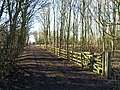 Dual Connection - geograph.org.uk - 1730832.jpg
