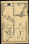 Early C20 Chinese Lithograph; 'Fan' diseases Wellcome L0039470.jpg
