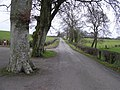 Edenderry Road - geograph.org.uk - 1104445.jpg