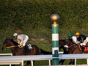 Glossary of North American horse racing - Horses going past the eighth pole at Santa Anita Park