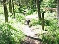 Emigrant Springs trail.JPG