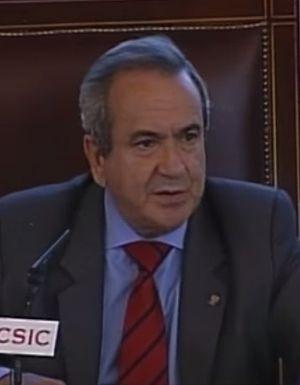 Emilio Lora-Tamayo