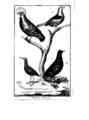 Encyclopedie volume 5-075.png