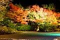 Entoku-in, Nantei (Garden) -1 (December 2015) - panoramio.jpg