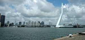 Rotterdam Skyscrapes的天际线