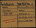 Ervin Feldheim Dachau Arolsen Archives.jpg