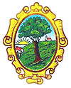 Coat of arms of San Isidro