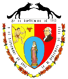 Official seal of Roscio Municipality