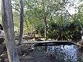 Estanque de aguas termales - panoramio.jpg