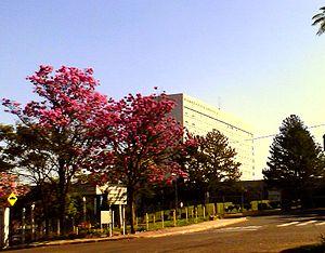Hospital das Clínicas de Ribeirão Preto - A view of the main building.