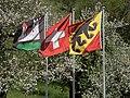 Fahnen in Oberburg b. Burgdorf.jpg