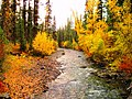 Fall Color on the Imnaha River by Hell's Canyon, Wallowa-Whitman National Forest (26195910604).jpg