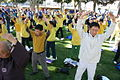 Falun Dafa the second exercise, standing meditation.jpg