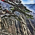 Fantastic view from top of Huashan Mountain ,Shaanxi province,China - panoramio.jpg
