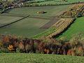 Farmland, Oare - geograph.org.uk - 282617.jpg