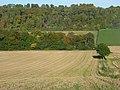 Farmland, Radnage - geograph.org.uk - 1014613.jpg