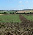 Farmland near John O'Gaunt - geograph.org.uk - 520485.jpg