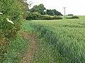 Farmland near the River Soar - geograph.org.uk - 853308.jpg
