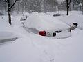 Feb 2013 blizzard 5882.jpg