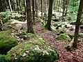 Felsenmeer in der Nähe vom Bannwald Untereck - panoramio (2).jpg